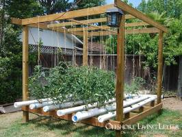 Living self-sufficient with a aquaponic system and farm in a box