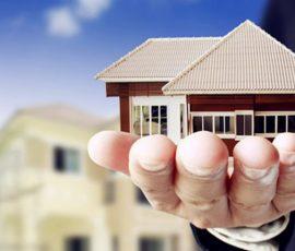 International Property Investment