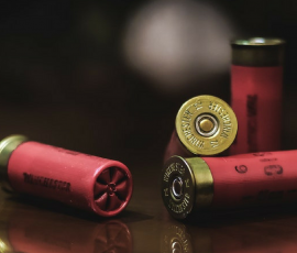 Dimly lit room with 12 gague shotgun shells resting on a reflective wood table