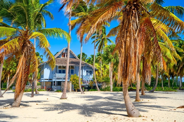 A home in Saona island, Dominican Republic with palm trees