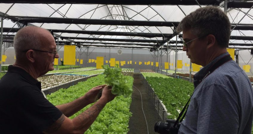 Thailand Aquaponics Project (And Profits) Continue To Grow