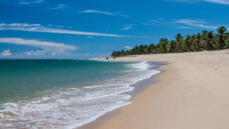 Gunga Beach - Alagoas - Maceio – Brazil.