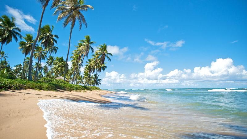 Paradise beach in Praia do Forte, Salvador de Bahia, Brazil.